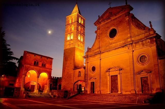 cattedrale by night