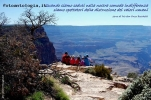 Foto Precedente: grand canyon